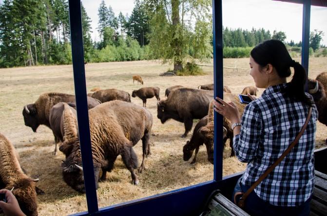 Credit: Sean Helmn / Tourism Nanaimo