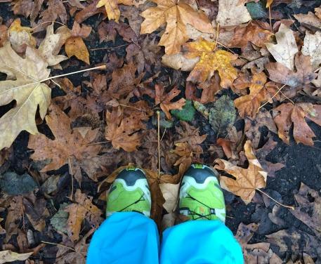 five fall walks in Nnanaimo
