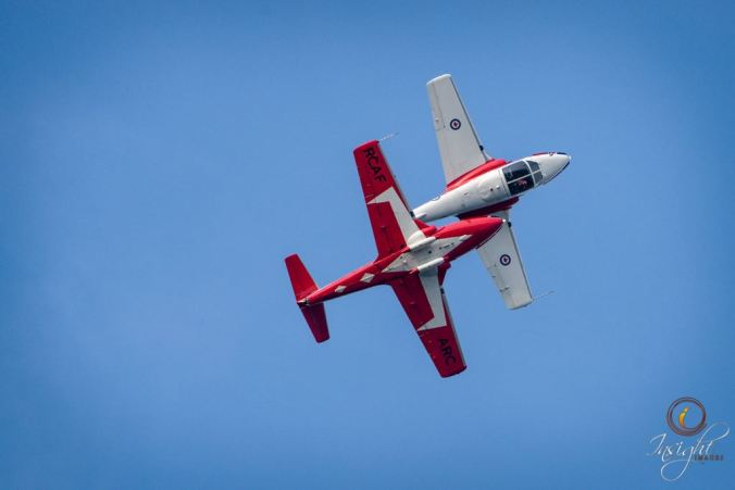 snowbirds-insightimages.jpg